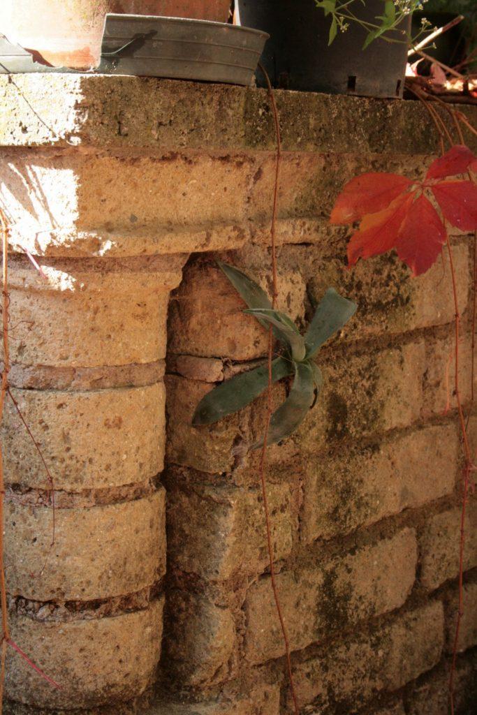 30-octobre2008-roma-057